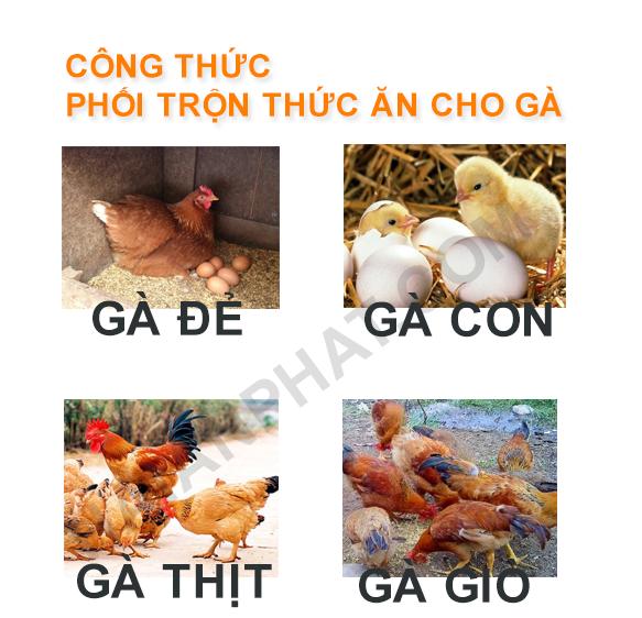 cong thuc phoi tron thuc an cho ga